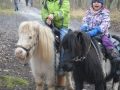 Kindergeburtstag - Ponyreiten Würenlos